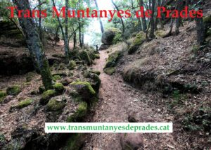 Trans Muntanyes de Prades